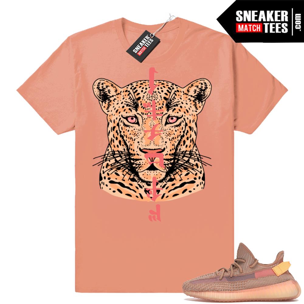 Sneaker Match Yeezy 350 Clay