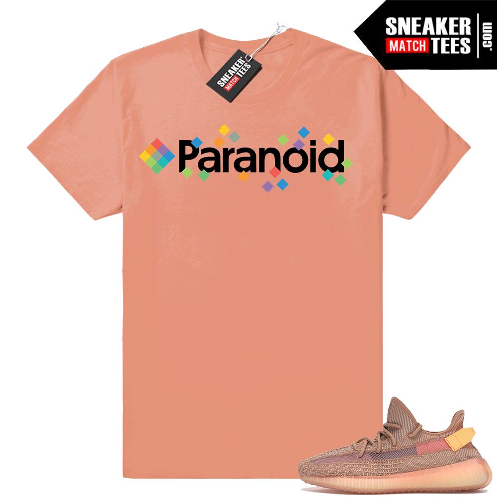 Yeezy Boost 350 Clay tee shirt