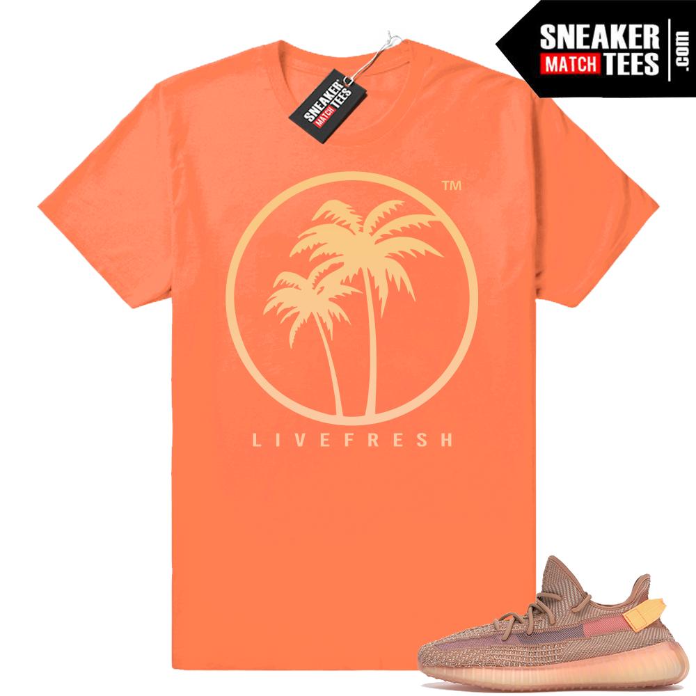 Yeezy Boost 350 V2 Clay sneaker matching shirt