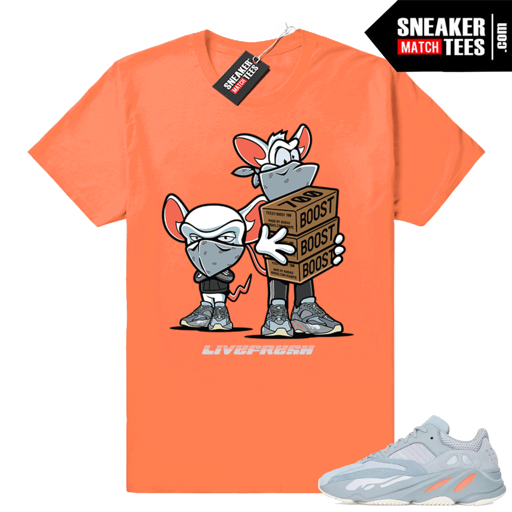 Yeezy boost 700 Inertia Sneaker T-shirt