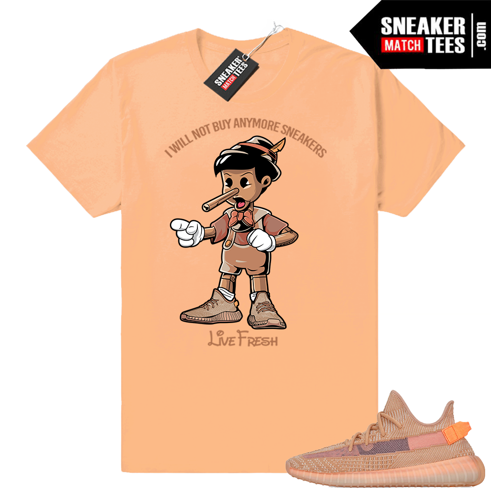 Yeezy shirt Clay 350 V2 shoes