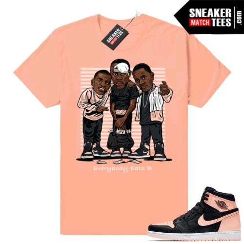 Jordan 1 Crimson Tint sneaker tees shirt