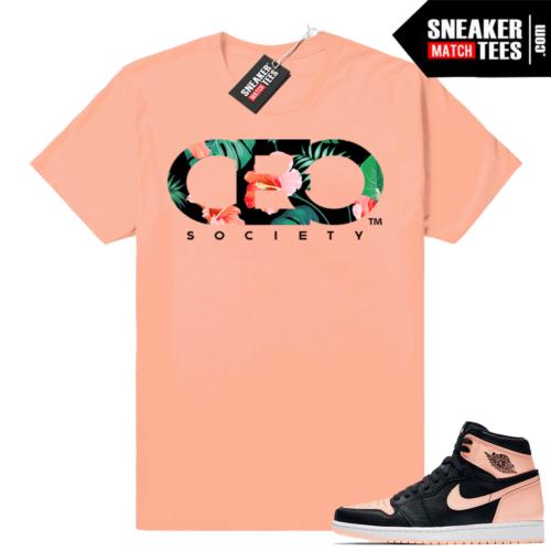 Match Jordan 1 Crimson tint sneakers