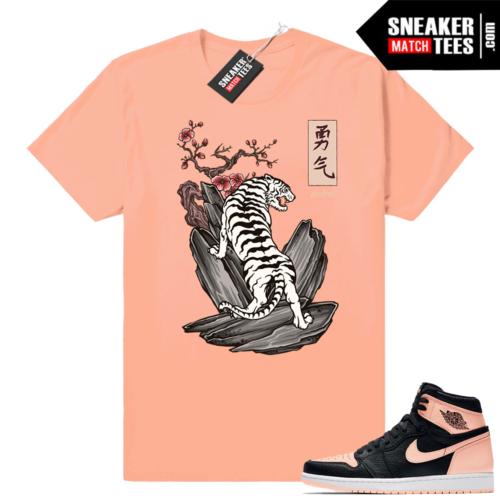 Match sneaker Jordan 1 Crimson tint
