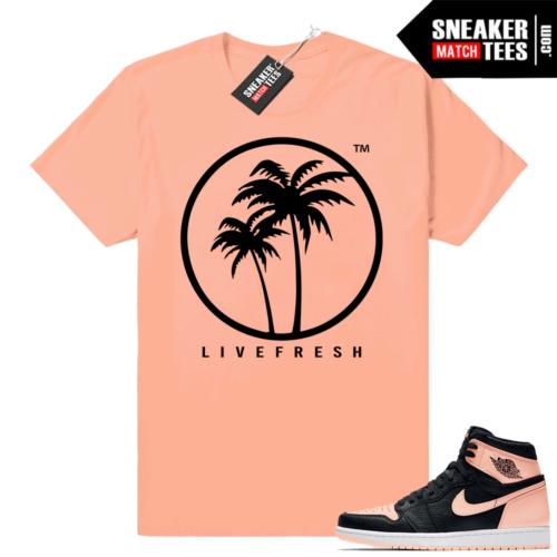 Sneaker Match Crimson Tint 1s