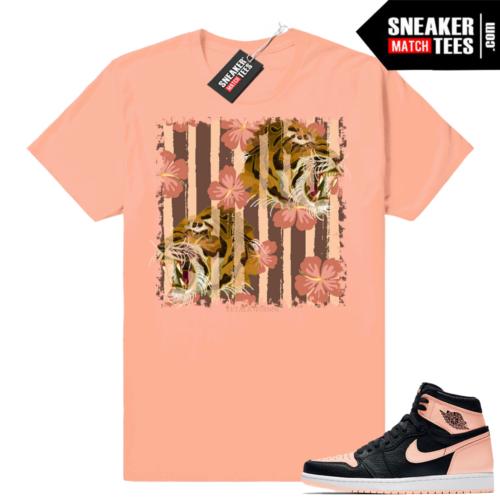 Sneaker Match Jordan 1s