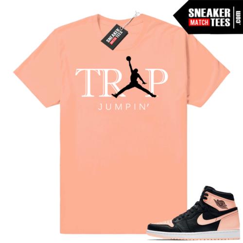 Sneaker shirts Jordan 1 Crimson tint