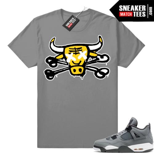 Air Jordan tees match Cool Grey 4