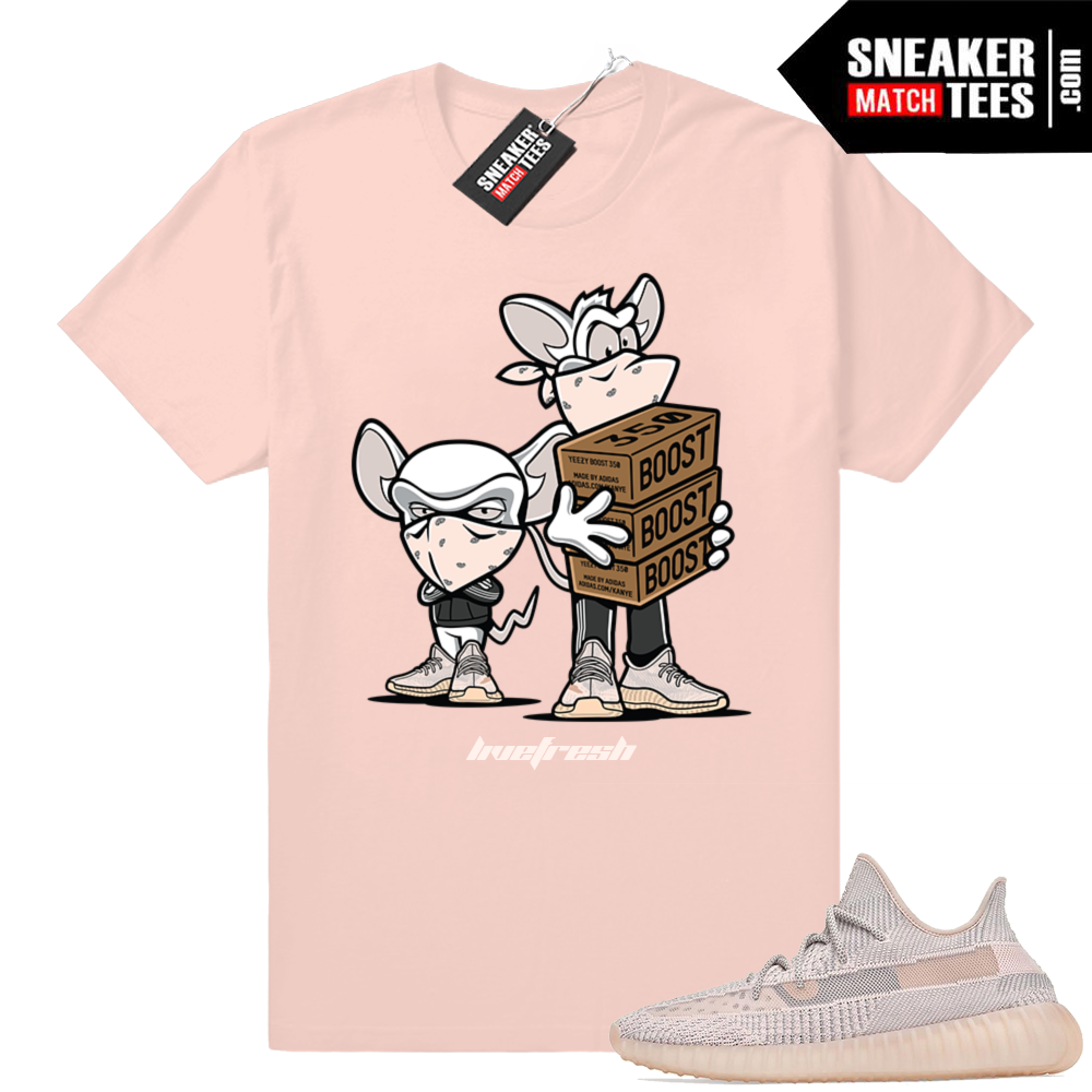 Yeezy Boost 350 V2 Synth Sneaker match shirt