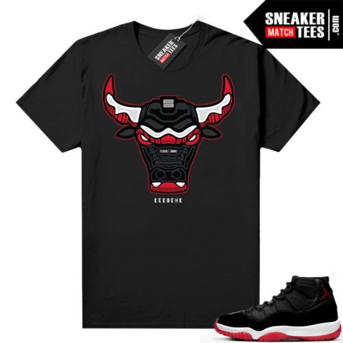 Jordan 11 Bred shirt Rare Air Bull