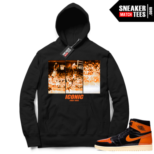 Jordan 1 Shattered Backboard 3 Iconic