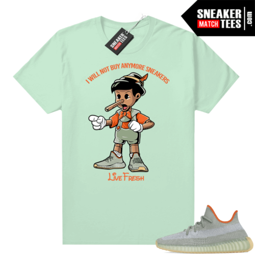 Yeezy Boost 350 V2 Desert Sage tees Mint Sneakerhead Pinocchio