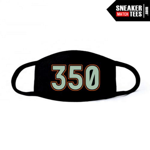 Face Mask Black Desert Sage 350