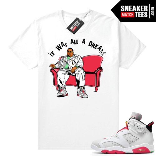 Jordan 6 Hare Sneaker tees It Was All A Dream