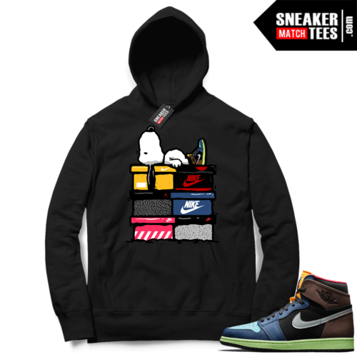 Jordan 1 Biohack matching sneaker hoodies
