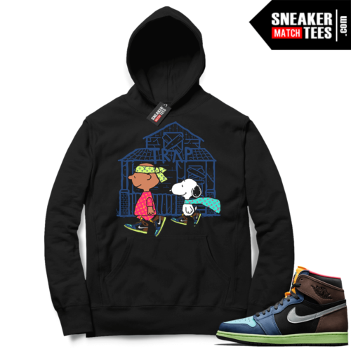 Jordan 1 Biohack matching graphic hoodies