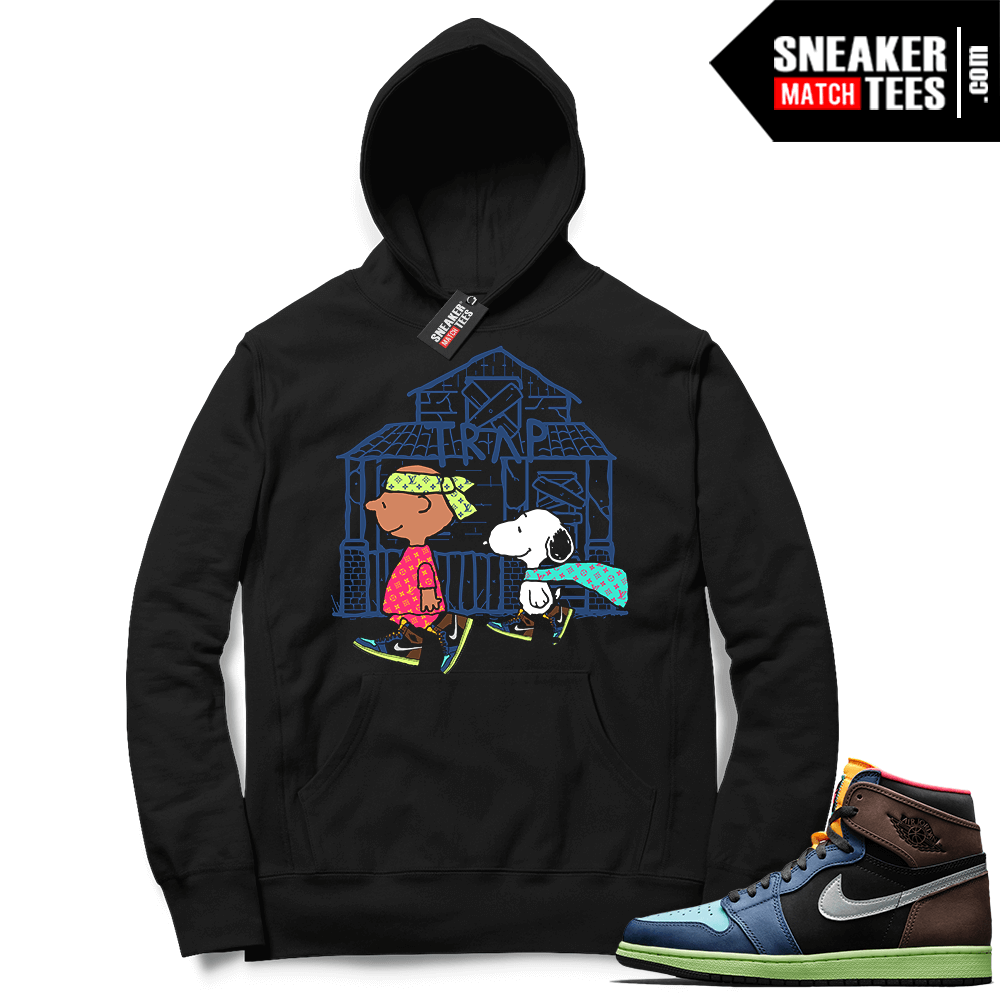 Jordan 1 Biohack matching graphic hoodies
