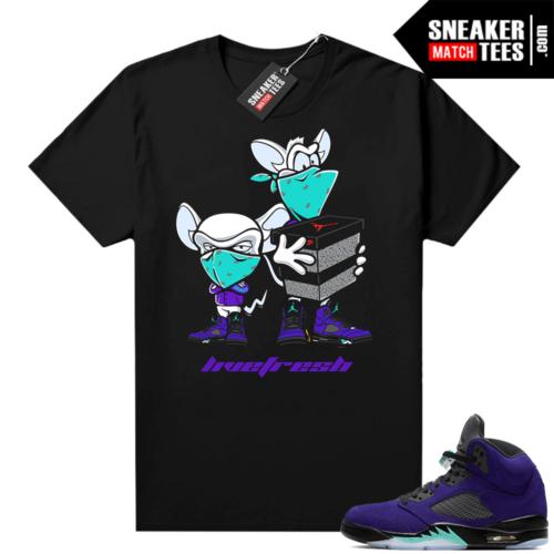 Shirts to match Alternate Grape 5s
