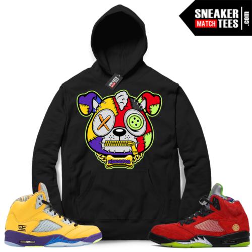 What The 5s sneaker Hoodie