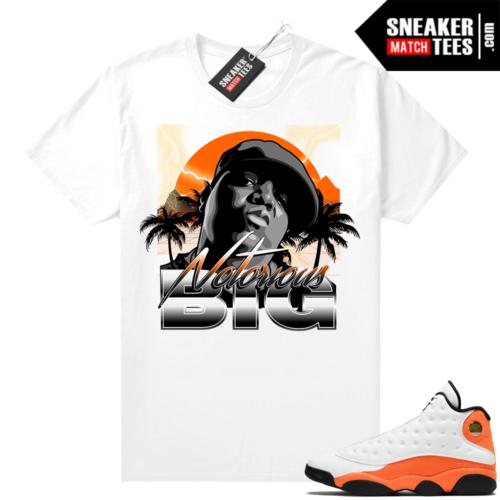 Shirts to match Starfish 13s