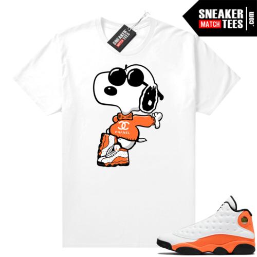 Air Jordan Starfish 13s shirts